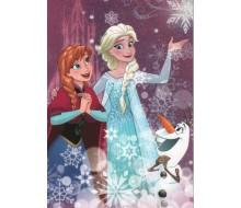 Kaartje Disney Frozen
